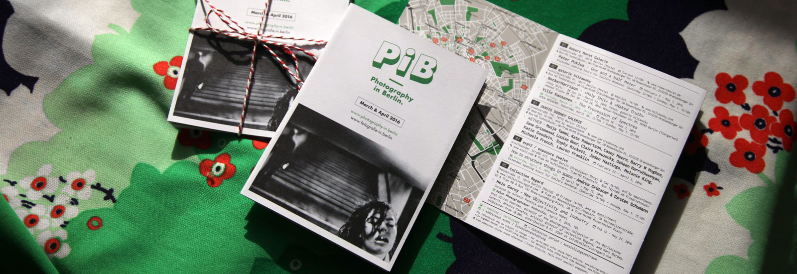 The PiB Guide #6 | March/April 2016 © PiB