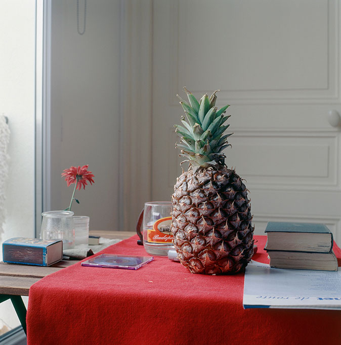 © Peter Puklus, Still-life With Pineapple, 2005, Paris
