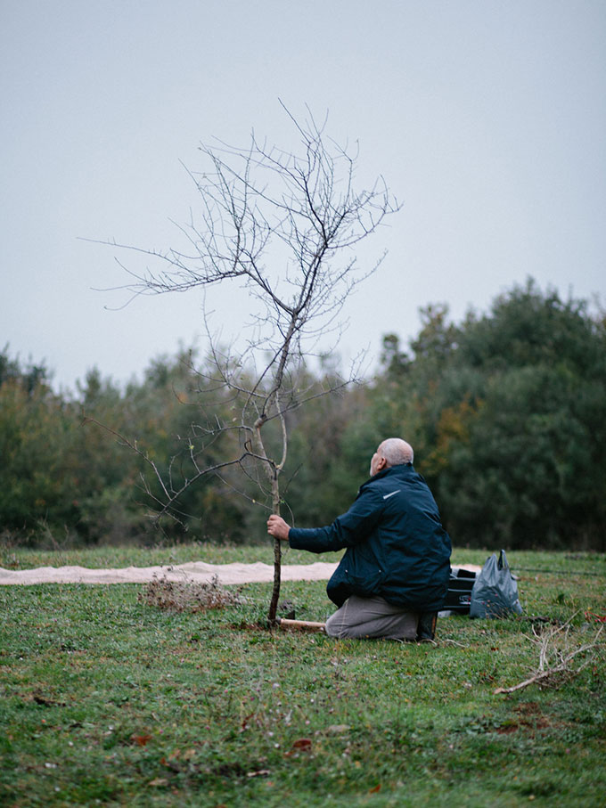 Holding A Tree, From The Series For Birds' Sake © Cemre Yeşil & Maria Sturm