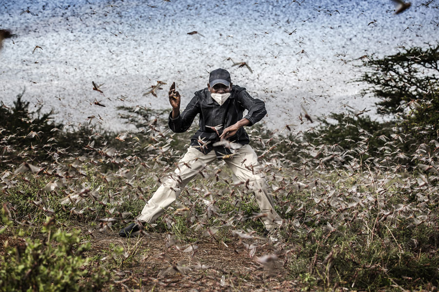Fighting Locust Invasion In East Africa © Luis Tato, Spain, For The Washington Post